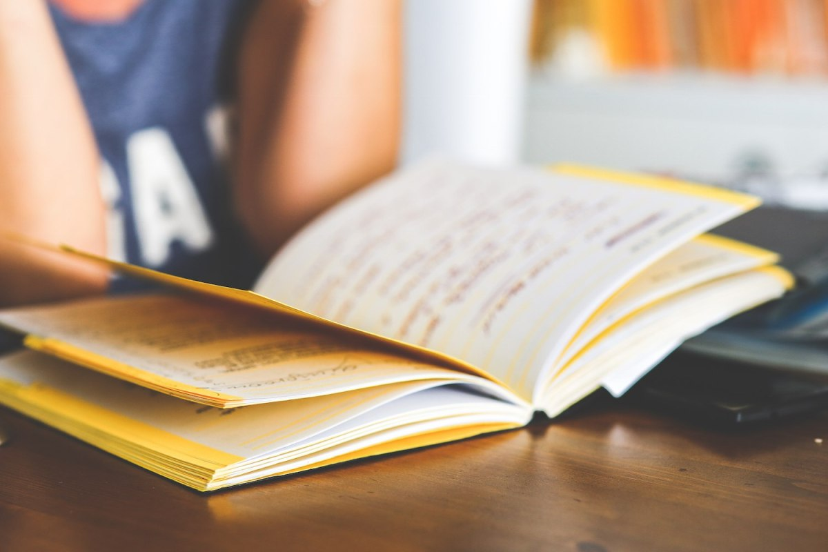 Please Stop Saying that Kids Don't Read Anymore By Andrea Koleck